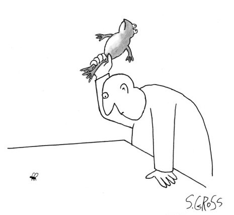 sam-gross-man-about-to-swat-fly-with-frog-new-yorker-cartoon